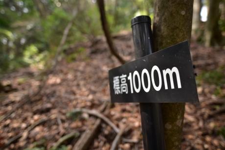 14気づけば1000m