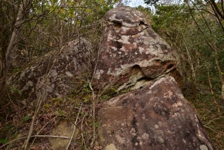 24バケモン岩