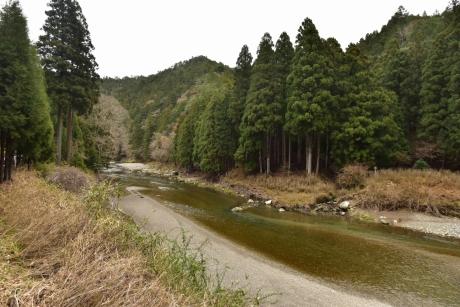 6桂川上流