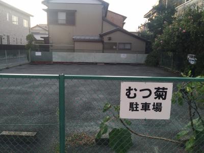 むつ菊11
