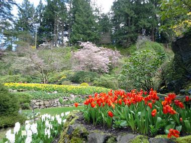butchart-garden_spring_2.jpg