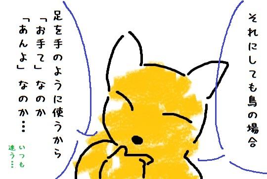 201603193.jpg