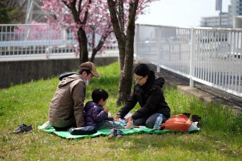 04新横浜お花見