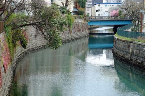 05運河の春