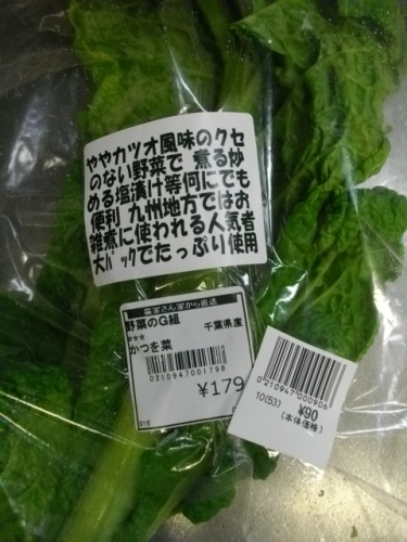 2016.4カツオ菜