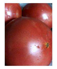 美音の健康レシピ  ~食を通じて日本を元気にしたい!~ -tomato21