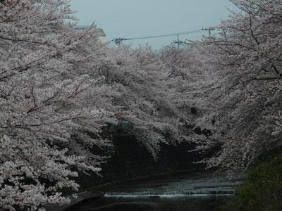 1_恩田川1