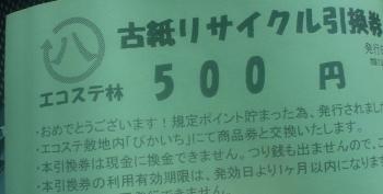 DSC13804 (14)