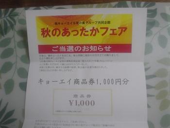 DSC00035c (1)