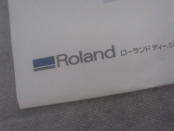 DSC00001f(19).jpg