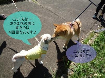 ともだち(1)
