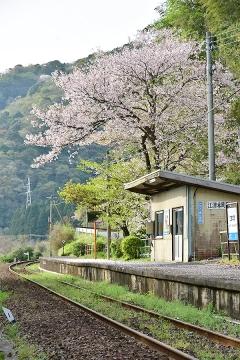 春色三江線(2)