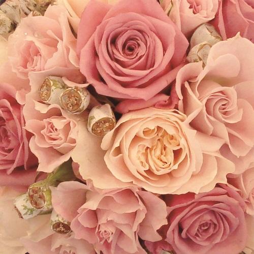 flower_pink.jpg