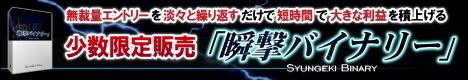 bn_shungeki_g468x8012B-thumbnail2.jpg