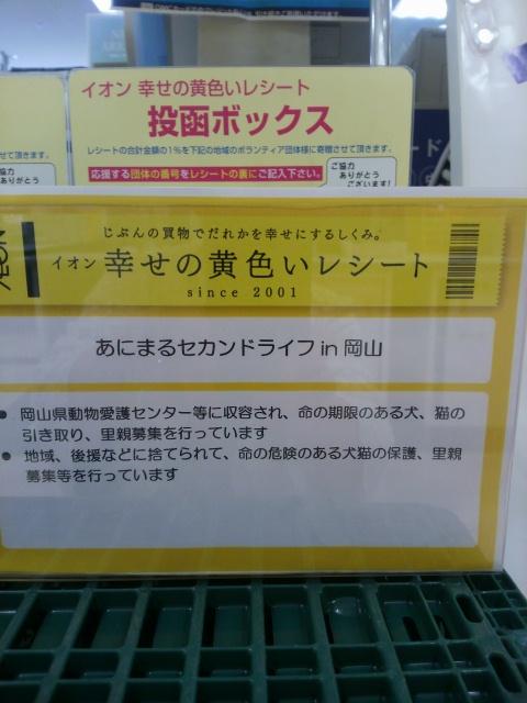 DCIM6329.jpg