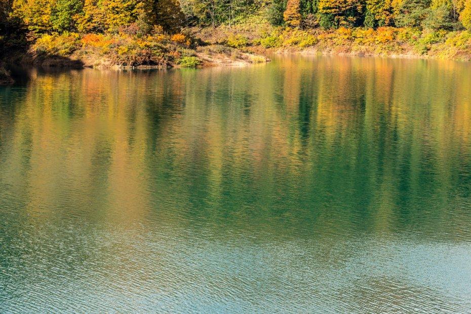 2015,10,22宝仙湖7