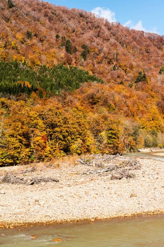 2015,10,22宝仙湖5