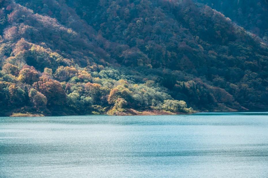 2015,10,22宝仙湖3