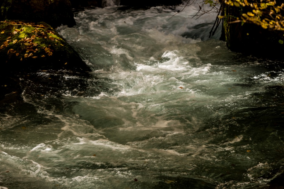 2015.10.23奥入瀬渓流の色彩14