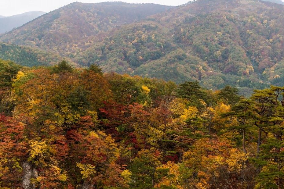 2015.10.25鳴子峡の紅葉10