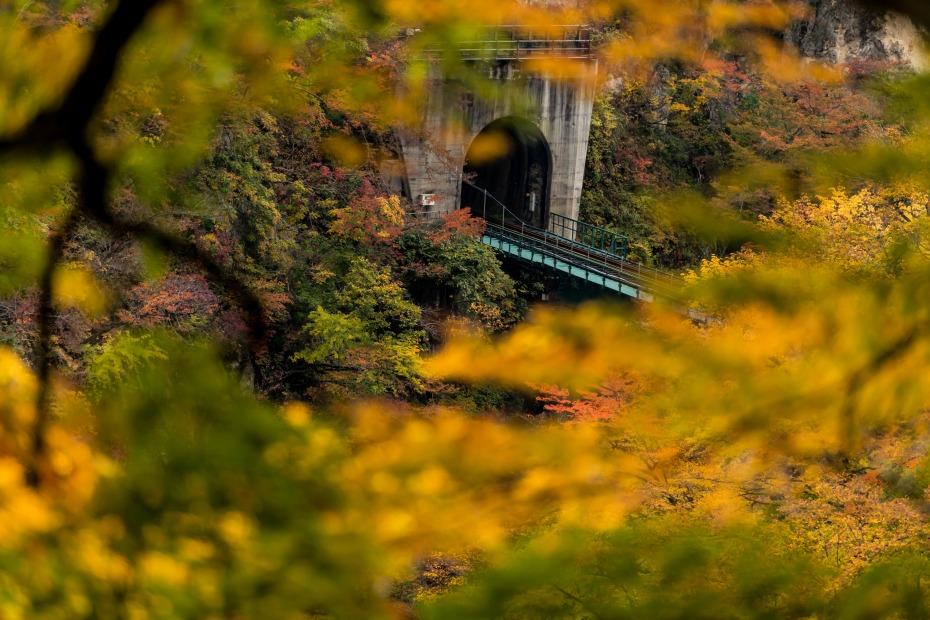 2015.10.25鳴子峡の紅葉7