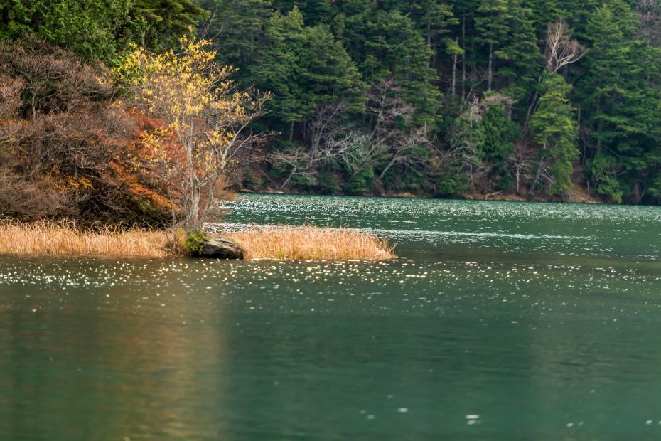 2015.10.27中禅寺湖周辺16
