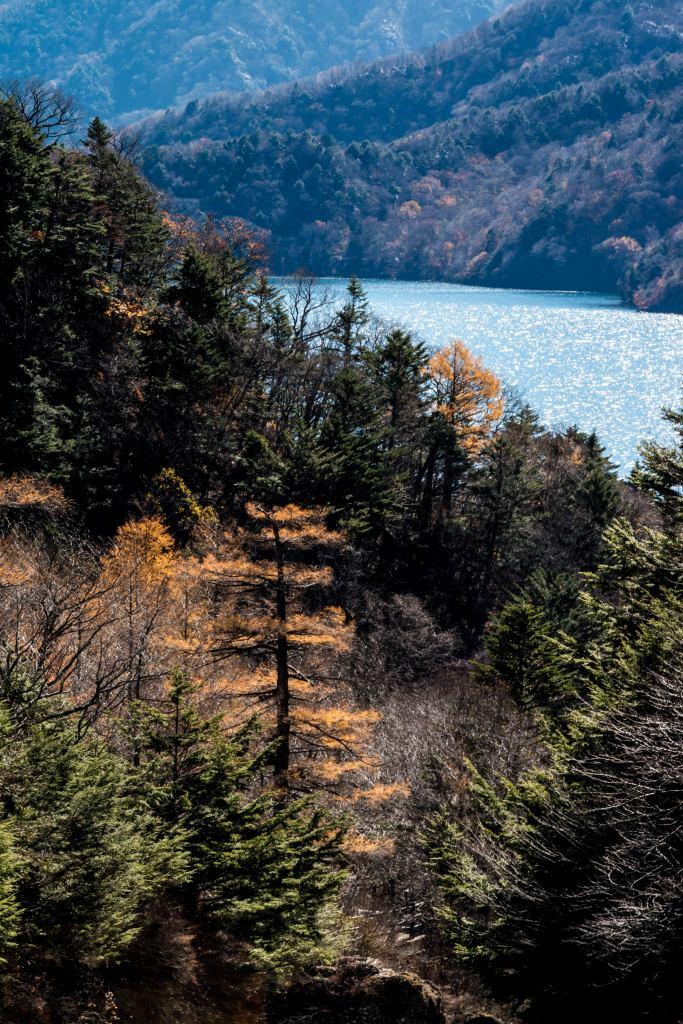 2015.10.27中禅寺湖周辺13