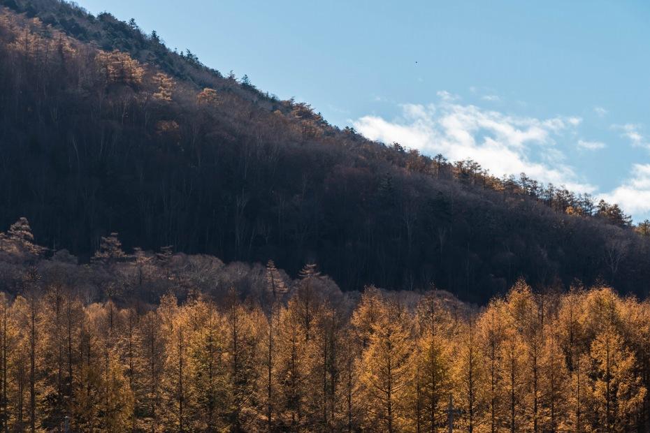 2015.10.28中禅寺湖周辺10