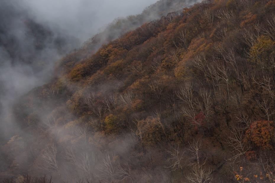 2015.10.29中禅寺湖眺望6