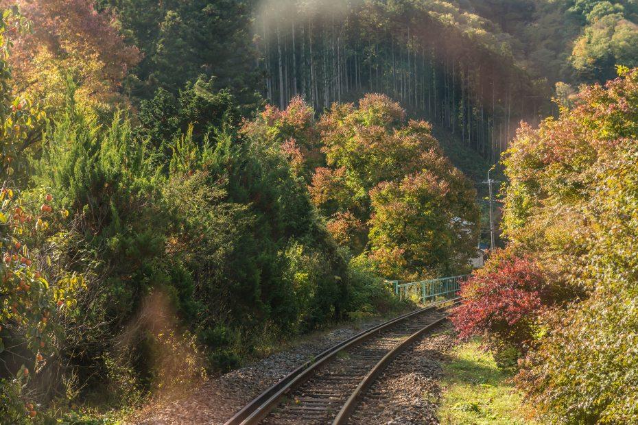 2015.10.30わたらせ渓谷鉄道13