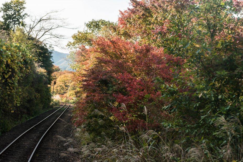 2015.10.30わたらせ渓谷鉄道11