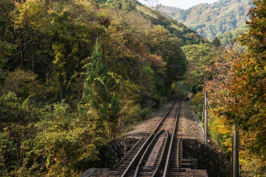 2015.10.30わたらせ渓谷鉄道5