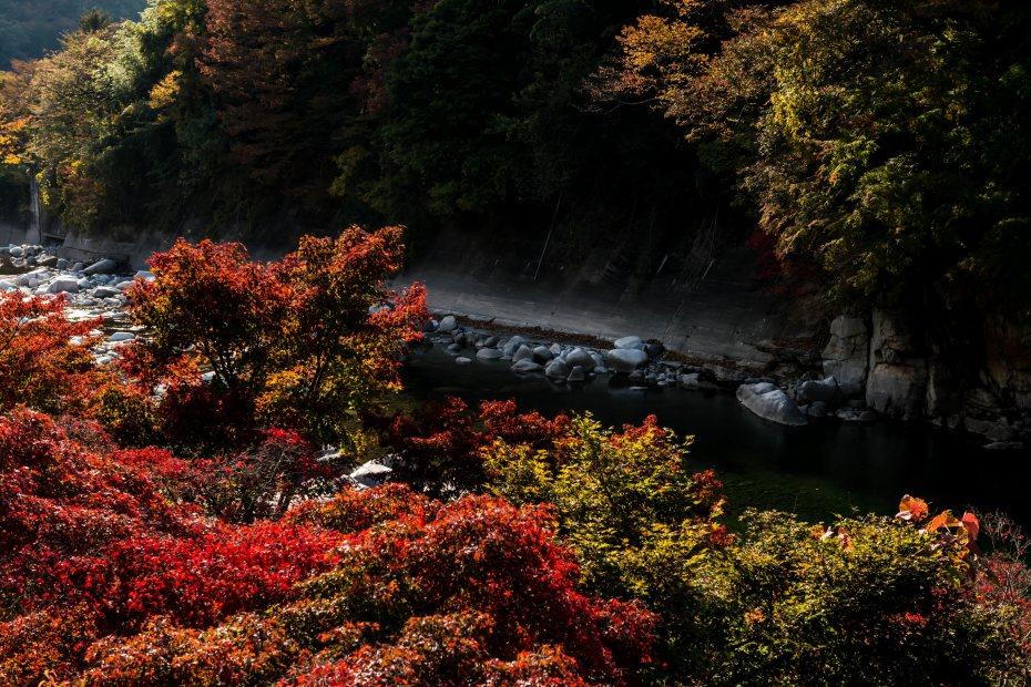 2015-10-30わたらせ渓谷鉄道沢入駅8
