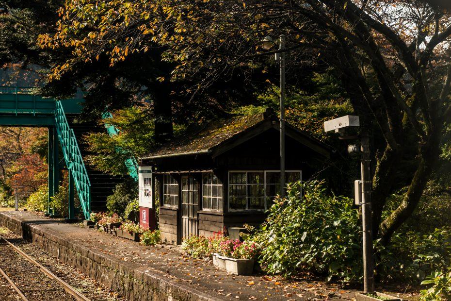 2015-10-30わたらせ渓谷鉄道沢入駅3
