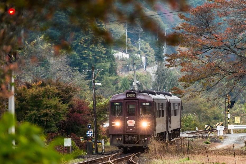 2015-10-30わたらせ渓谷鉄道沢入駅2