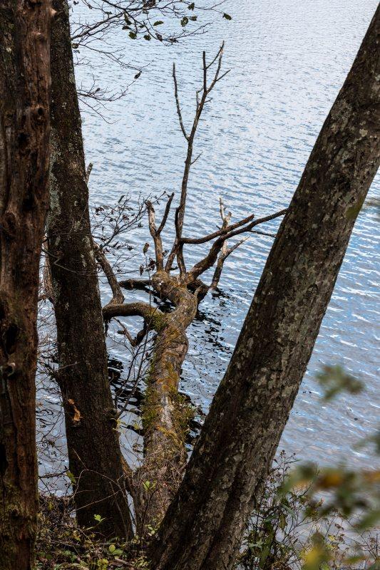2015.10.31榛名湖を周回散策35
