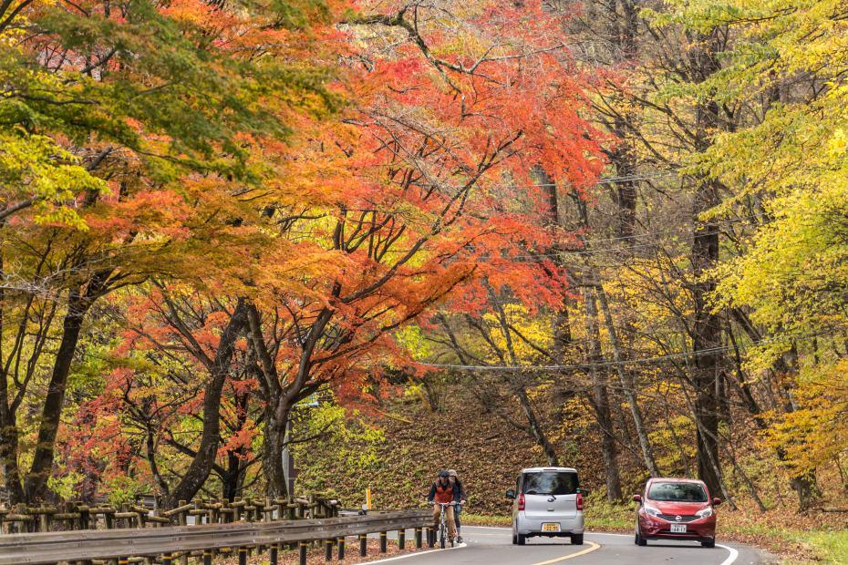 2015.10.31榛名湖を周回散策34
