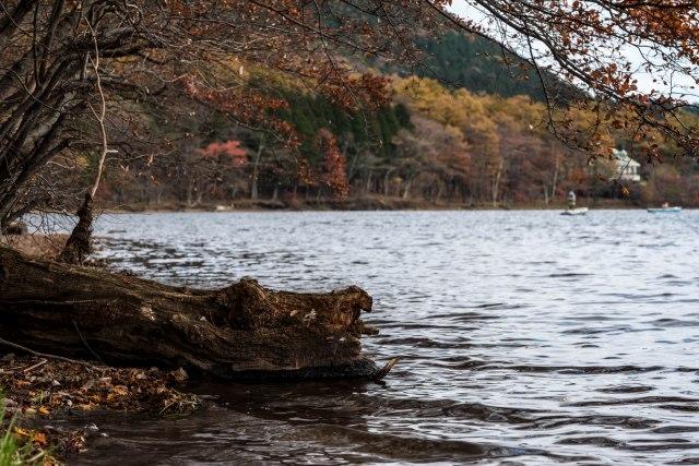 2015.10.31榛名湖を周回散策26
