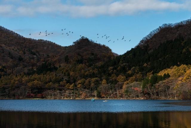 2015.10.31榛名湖を周回散策20