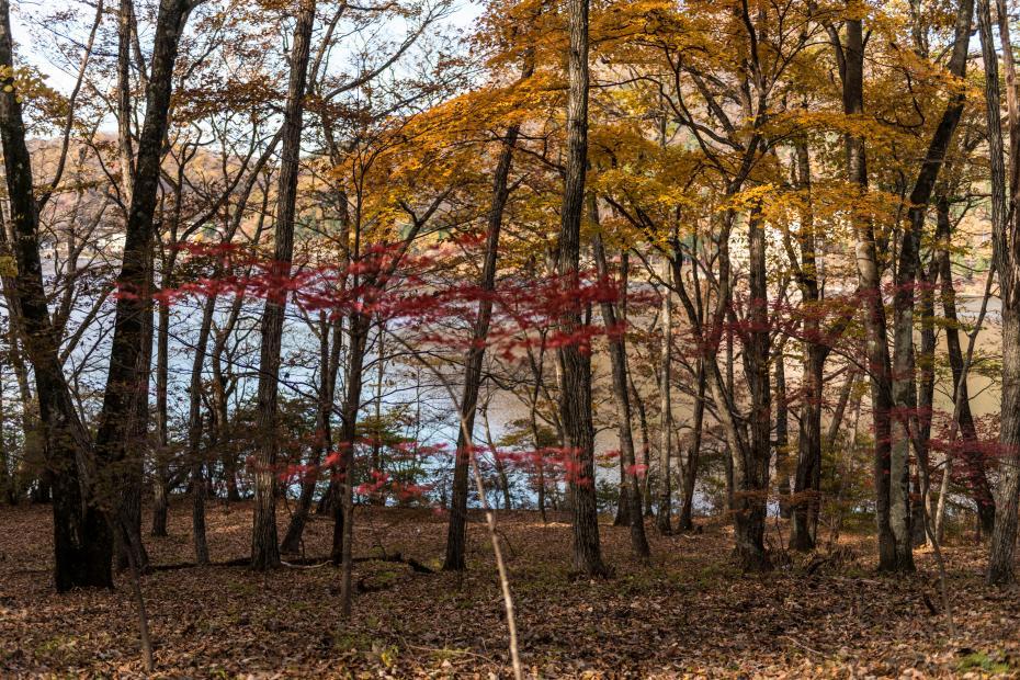 2015.10.31榛名湖を周回散策10