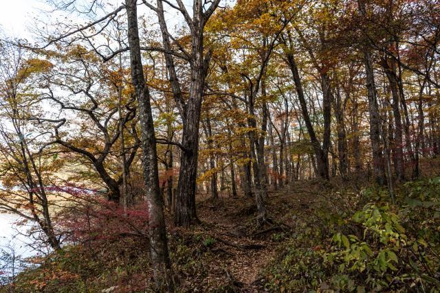2015.10.31榛名湖を周回散策4