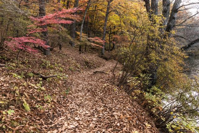 2015.10.31榛名湖を周回散策6