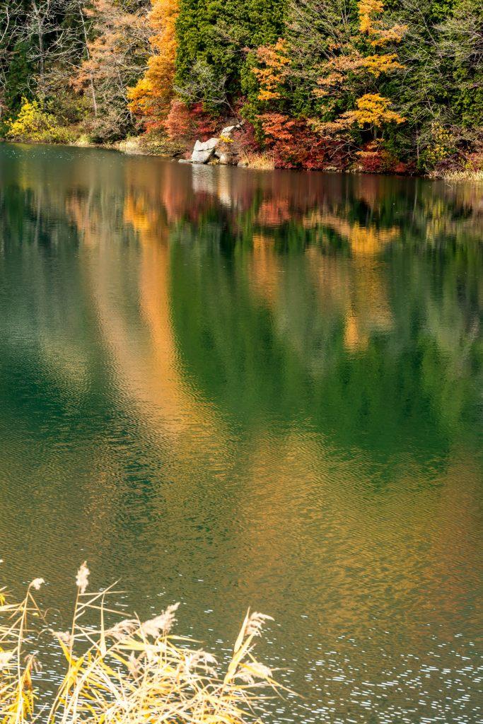 2015.11.07中綱湖2