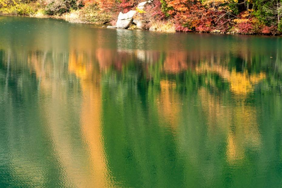 2015.11.07中綱湖1