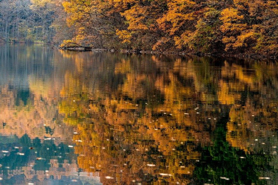 2015.11.07青木湖10