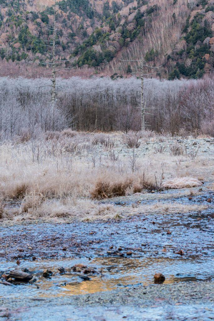 2015.11.12上高地の大正池と周辺7