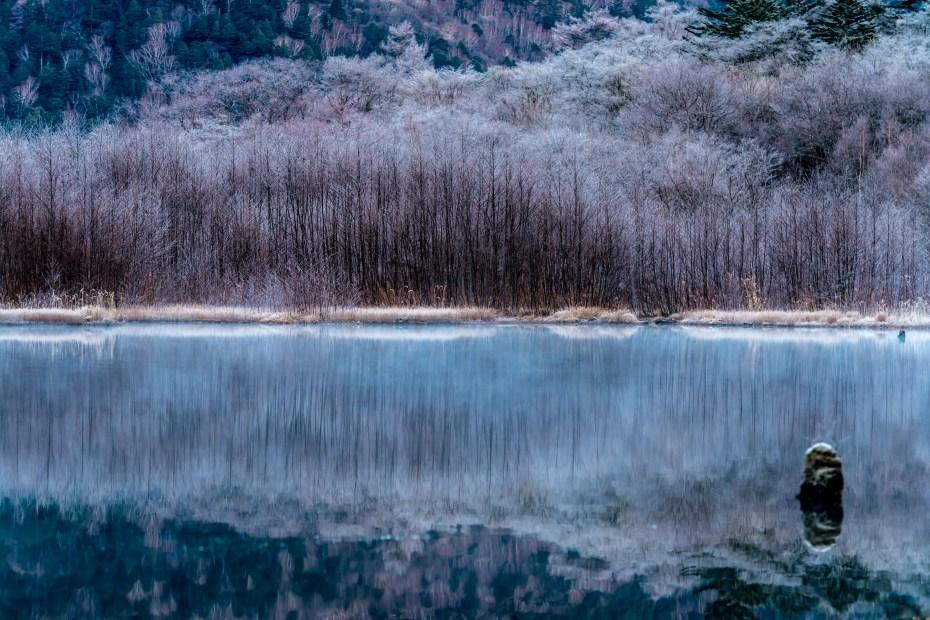 2015.11.12上高地の大正池と周辺3