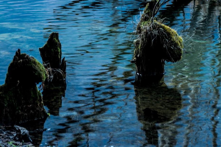 2015.11.12河童橋から大正池へ14