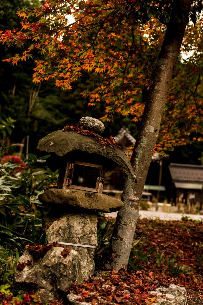 2015.11.17徳源院の紅葉14