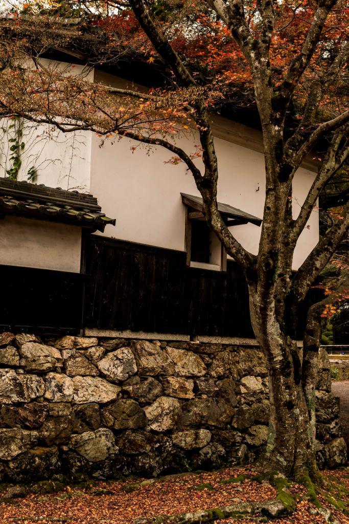 2015.11.17徳源院の紅葉12
